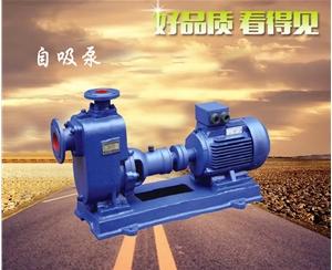 广东自吸泵